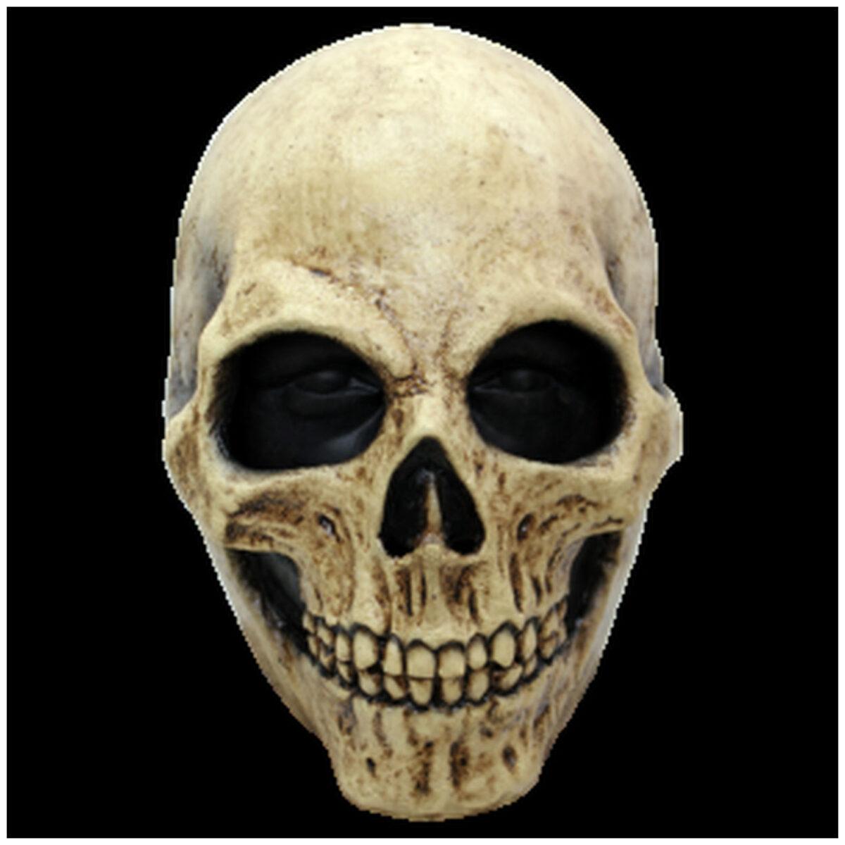 Bone-skull